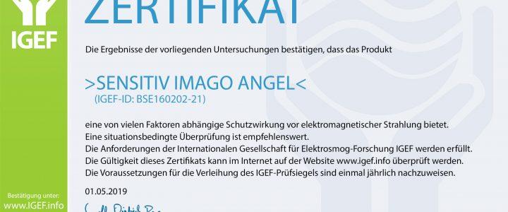 IGEF-ZERTIFIKAT-BSE-DE-19