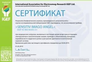 IGEF-ZERTIFIKAT-BSE-RU-19