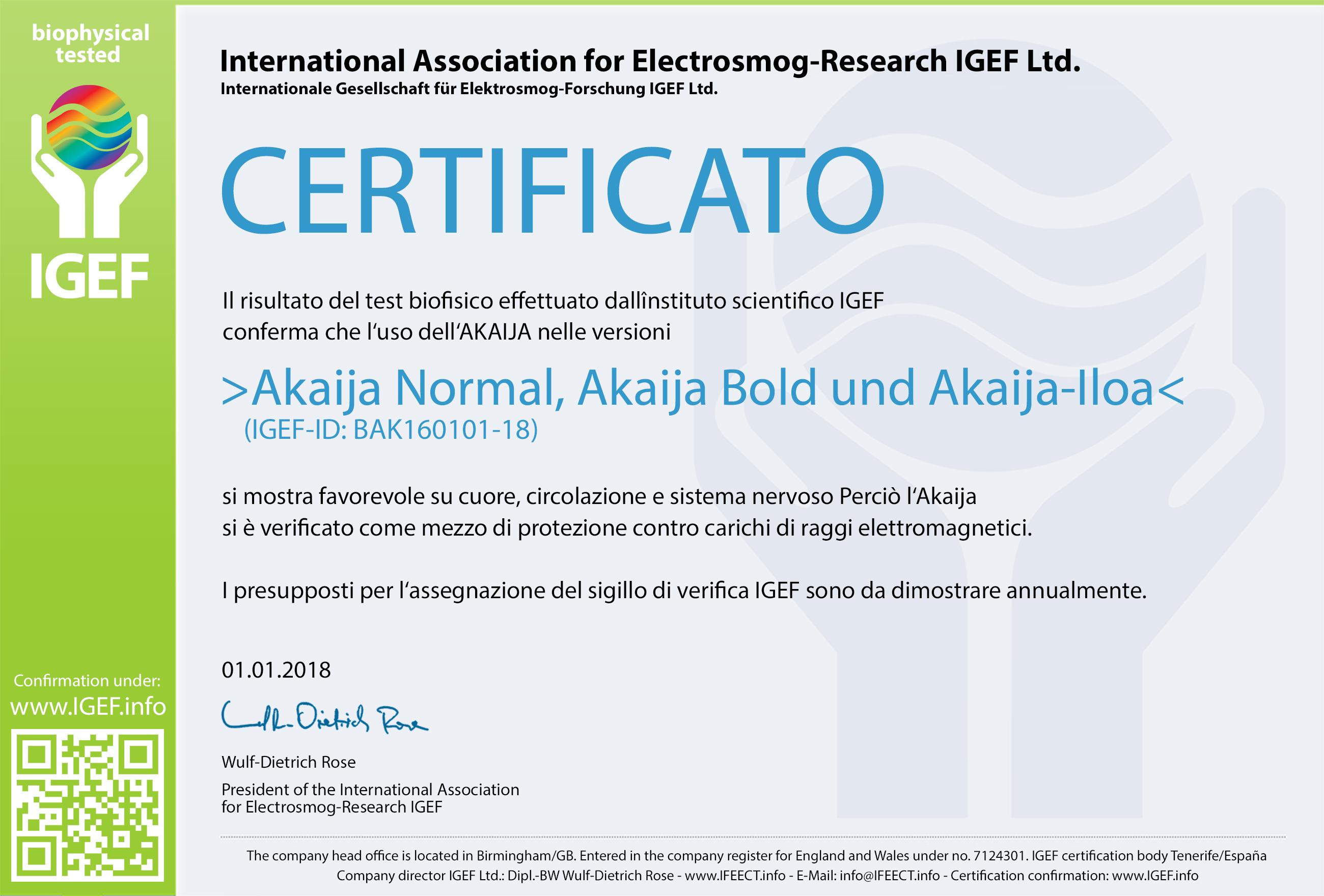 IGEF-Zertifikat-BAK-IT-18