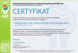 IGEF-Zertifikat-BAK-PL-19