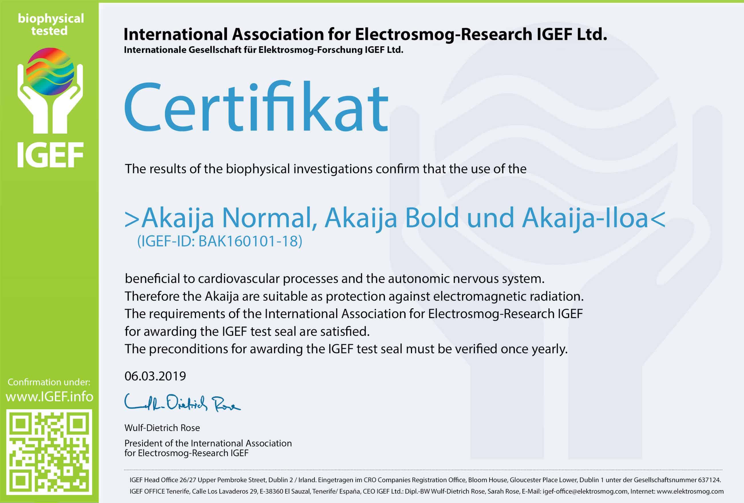 IGEF-Zertifikat-BAK-EN-19