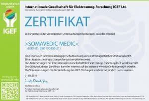 IGEF-ZERTIFIKAT-BSO-DE-19