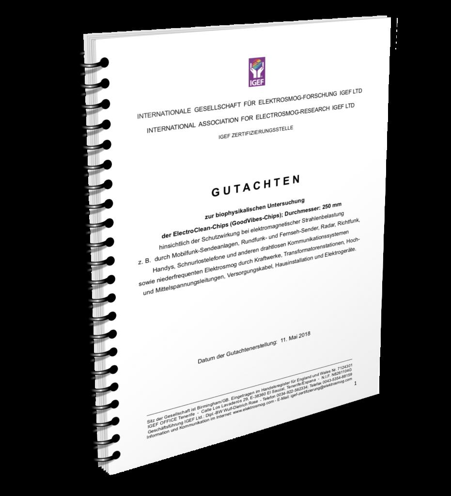 ElectroClean Gutachten-Ring-DE