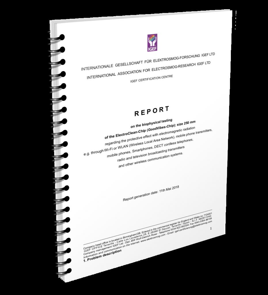 ElectroClean Report-EN